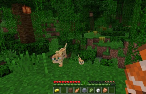 Download Minecraft For Windows 10 Latest Version 2021
