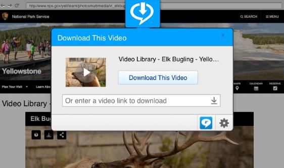 RealPlayer Screenshot for Windows10